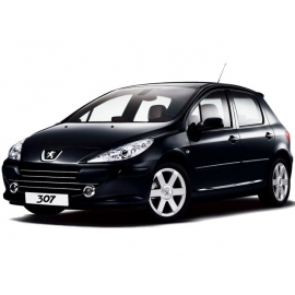 Navegador Multimedia GPS específico para Peugeot 307