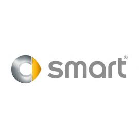 Navegadores Multimedia GPS específicos para SMART.